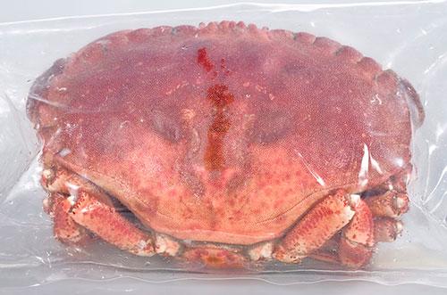 Crab_056_500px